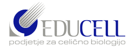 EDUCELL